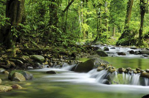 Eco-retreats in Malaysia
